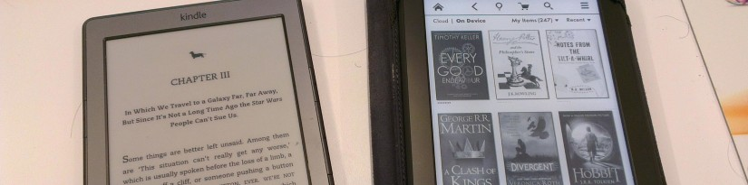 Ereader sales may have stalled, but ebooks aren't going anywhere